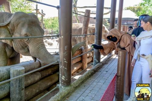 29 - Patti Zoo